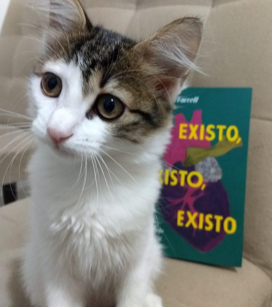 existoexistoexisto